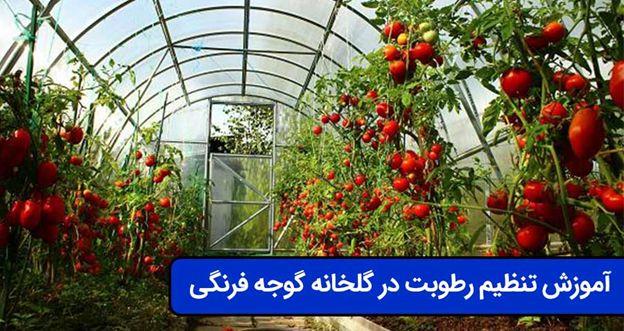 image_8805f524da9bbab4681adce54c74a7ee8b7e0f7b
