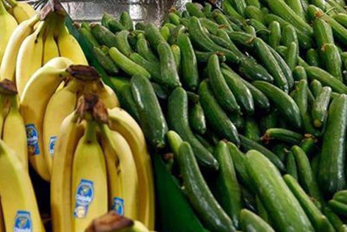قیمت جدید خیار و موز در بازار + نرخ سایر میوه ها