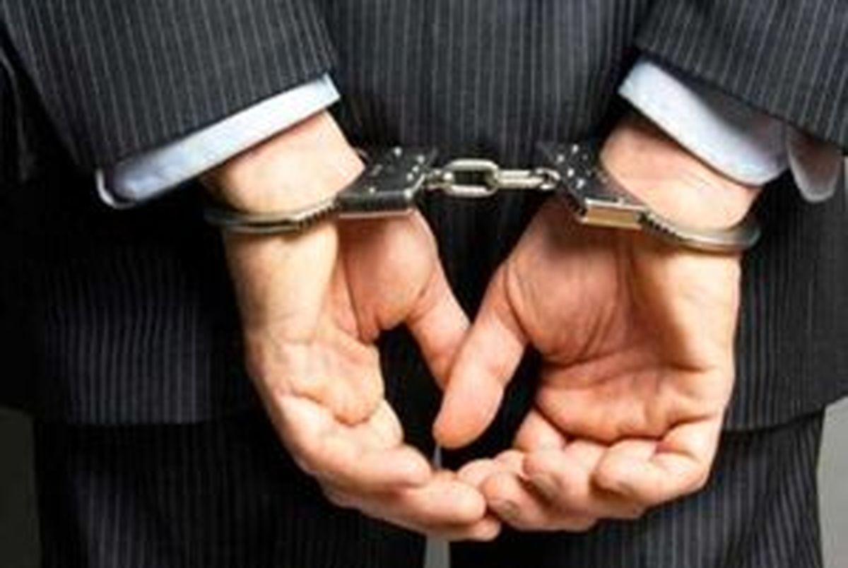 مدیر عامل پتروشیمی رازی بازداشت شد