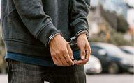 فردی که 27 سگ خانگی را دزدیده بود، توسط نیرو های پلیس دستگیر شد